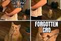 Don't forget CROs