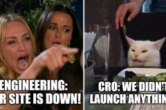 We didn't launch anything
